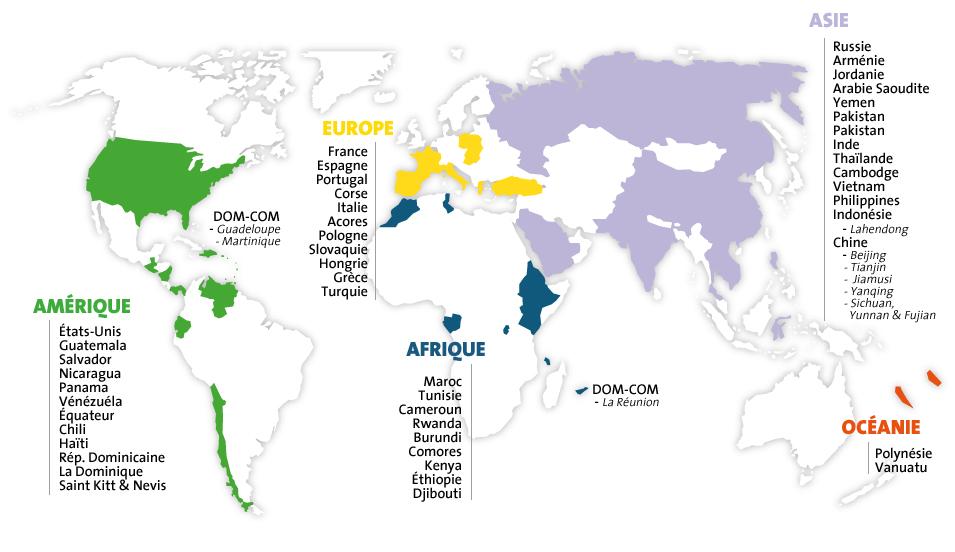 DOM-COM : La Guadeloupe – Étude de préfaisabilité du projet Bouillante 3